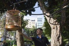 Parque do pássaro Foto de Stock