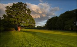 Parque do país de Pollok - Glasgow Imagem de Stock Royalty Free