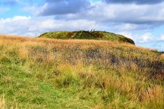 Parque do país do monte da caverna de Belfast - Irlanda do Norte fotos de stock royalty free