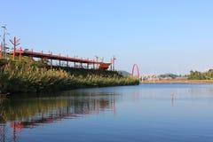 Parque do pantanal Imagens de Stock Royalty Free