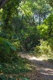 Parque do Repos de segunda-feira, cidade de Corfu, Gr?cia imagem de stock