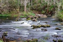 Parque do rio de Hillsborough Imagens de Stock