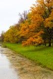 Parque do ` s de Catherine em Tsarskoe Selo Foto de Stock Royalty Free