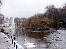 Parque do ` s de St James com neve fotografia de stock