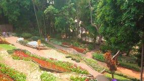 Parque do terraço do jardim de Mae Fah Luang, Doi Tung, Tailândia video estoque