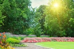 Parque do verão Imagens de Stock Royalty Free