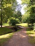 Parque do verão Imagem de Stock