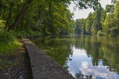 Parque do verão Fotos de Stock Royalty Free
