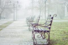 Parque dos bancos na primavera O tempo ? nevoento fotos de stock royalty free