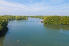 Parque dos manguezais Fotografia de Stock