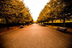 Parque dos regentes Imagem de Stock Royalty Free