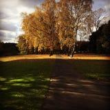 Parque Dublín de Phoenix Fotografía de archivo libre de regalías