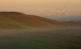 Parque eólico en la niebla en la salida del sol Foto de archivo libre de regalías