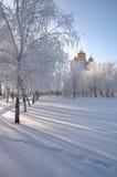 Parque e iglesia del invierno fotos de archivo