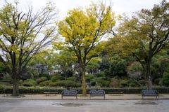 Parque e jardim japoneses Foto de Stock Royalty Free