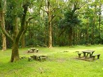 Parque e lugar verdes do descanso Fotografia de Stock