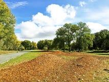 Parque el tiempo del otoño Foto de archivo
