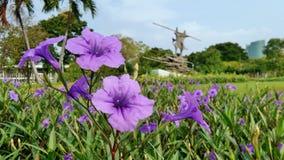 Parque em Bangkoj Foto de Stock Royalty Free