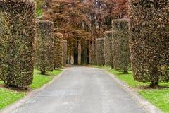 Parque em Bruxelas Imagem de Stock Royalty Free
