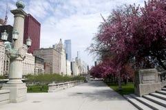 Parque em Chicago Foto de Stock