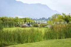 Parque em México imagem de stock