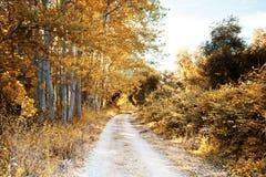 Parque em Pateira Portugal Imagem de Stock Royalty Free