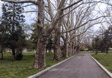 Parque em Sófia, Bulgária Fotos de Stock Royalty Free