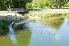 Parque em Sigmaringen, Alemanha Imagem de Stock