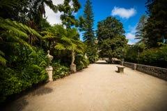 Parque em Sintra foto de stock royalty free
