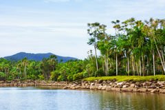 Parque em Tailândia. Foto de Stock