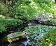 Parque em Vancôver Fotografia de Stock Royalty Free