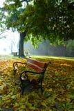 Parque em Wloclawek Fotografia de Stock Royalty Free