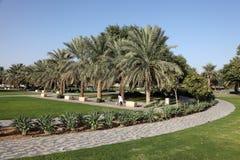 Parque en Al Ain, United Arab Emirates Fotografía de archivo libre de regalías