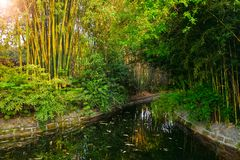 Parque en Chengdu, China fotografía de archivo