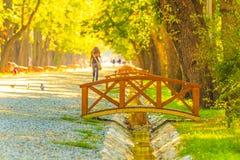 Parque en Cluj-Napoca foto de archivo