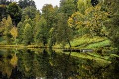 Parque en el bosque Imagenes de archivo