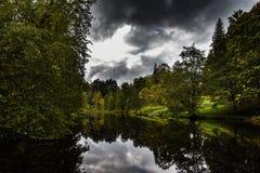 Parque en el bosque Foto de archivo libre de regalías