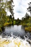 Parque en el bosque Imagen de archivo libre de regalías