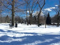 Parque en el país de las maravillas del invierno Fotografía de archivo