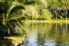 Parque en el río foto de archivo