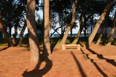 Parque en el verde Imágenes de archivo libres de regalías