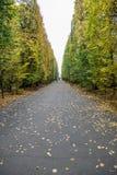 Parque en Gdansk Imágenes de archivo libres de regalías