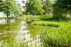 Parque en Hamburgo imagen de archivo