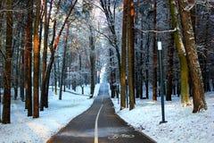 Parque en invierno Fotografía de archivo