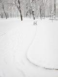 Parque en invierno Fotos de archivo