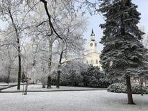 Parque en invierno Imagen de archivo