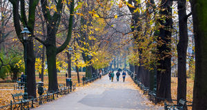 Parque en Kraków en Polonia Imágenes de archivo libres de regalías