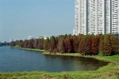 Parque en la ciudad Foto de archivo libre de regalías