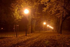 Parque en la noche. Imagen de archivo libre de regalías