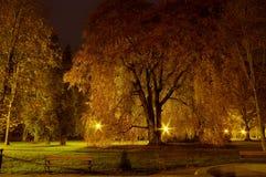 Parque en la noche Imagen de archivo libre de regalías